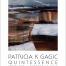 Patricia Gagic poster