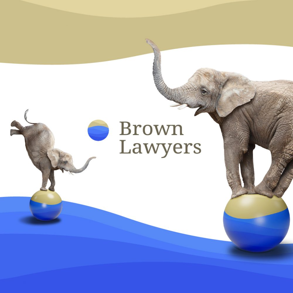 Brown Lawyers case study image. Happy elephants balancing on a ball
