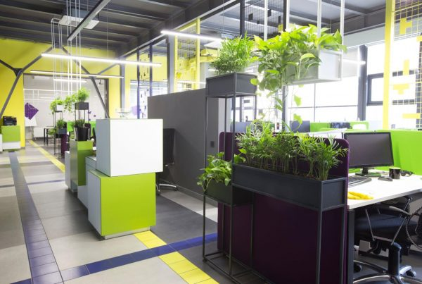 A greener workplace includes more than just plants!