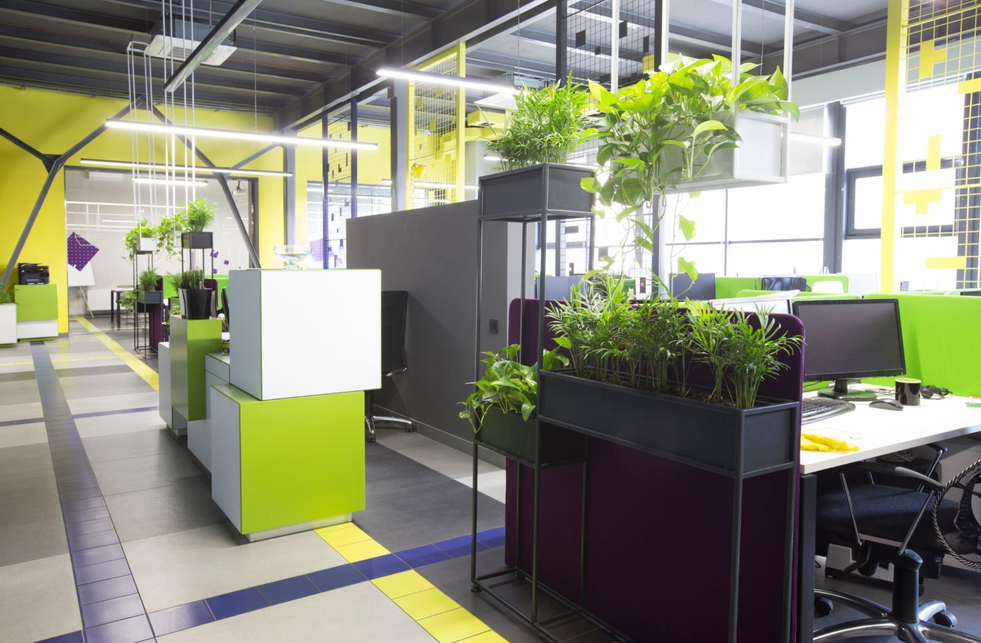 Establishing a Greener Workplace